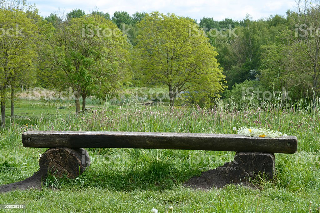old wooden bench in the parc with field flowers stock photo