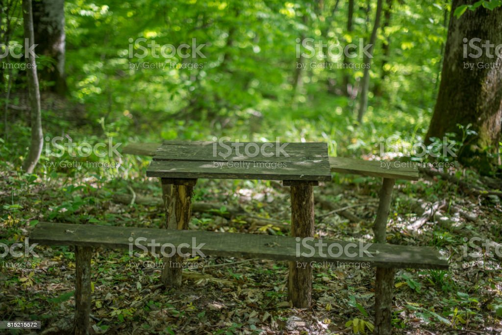 Old wooden benches and a table in the forest. stock photo
