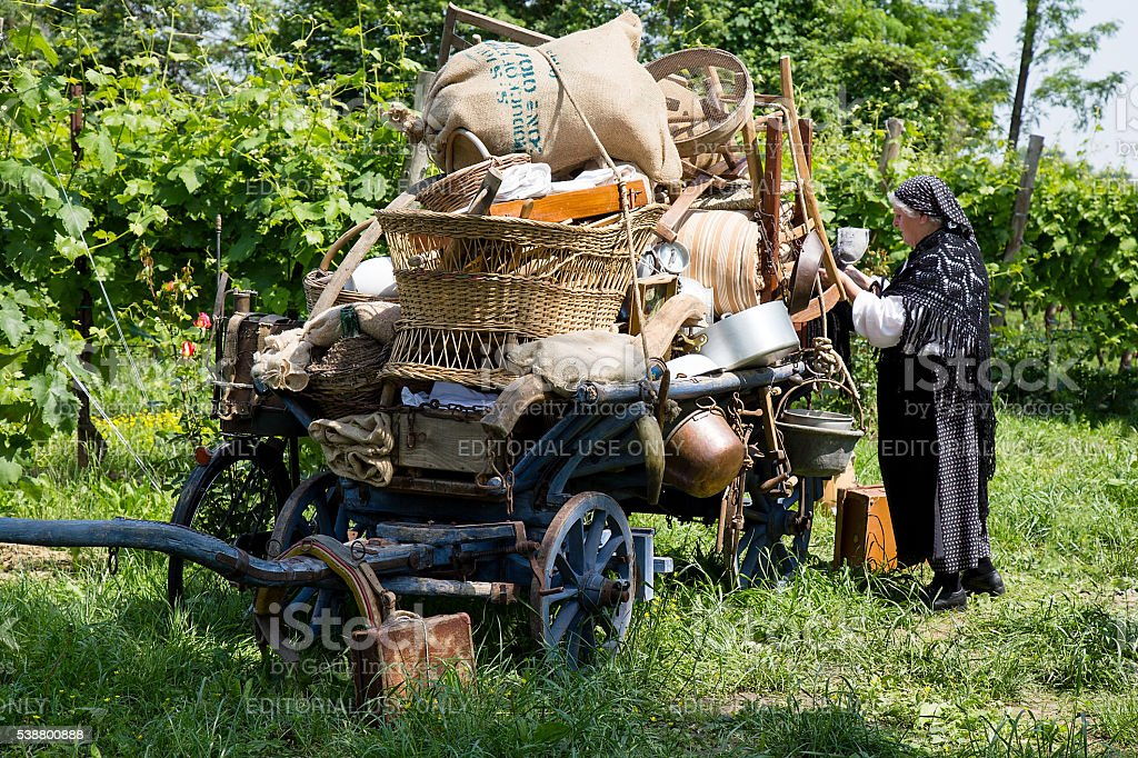 Old wooden coach and Woman in traditional peasant clothing stock photo