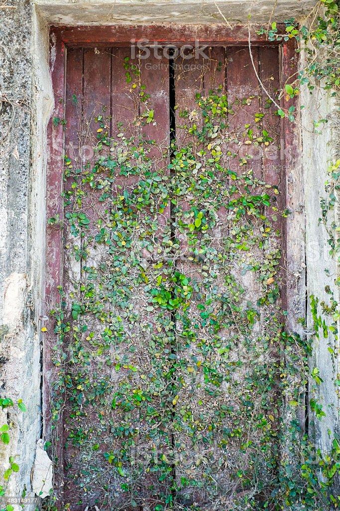Antigua puerta de madera foto de stock libre de derechos