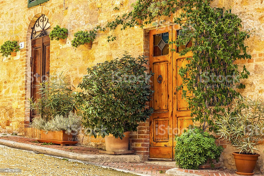 Old Wooden Doors With Plants, Tuscany, Italy stock photo