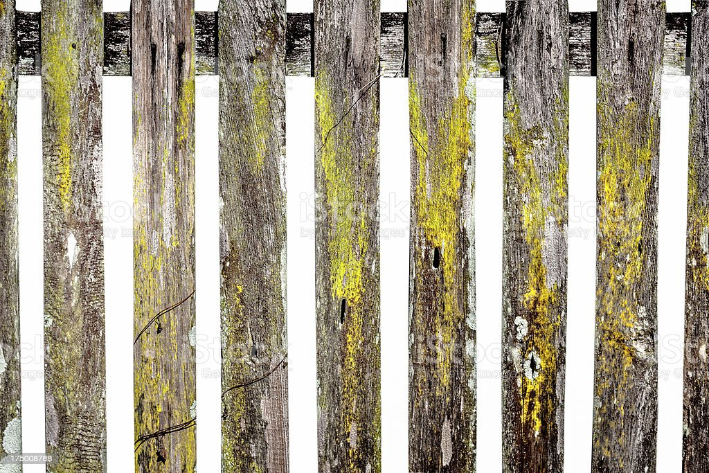 Old wooden fence in garden royalty-free stock photo