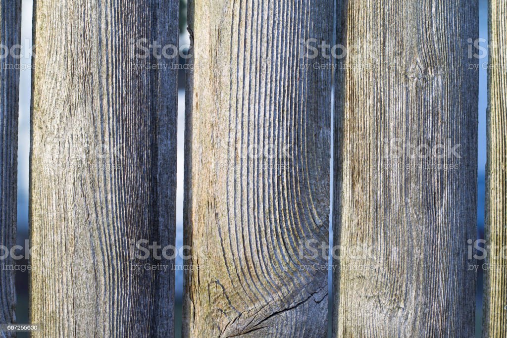 Old Wooden Fence stock photo