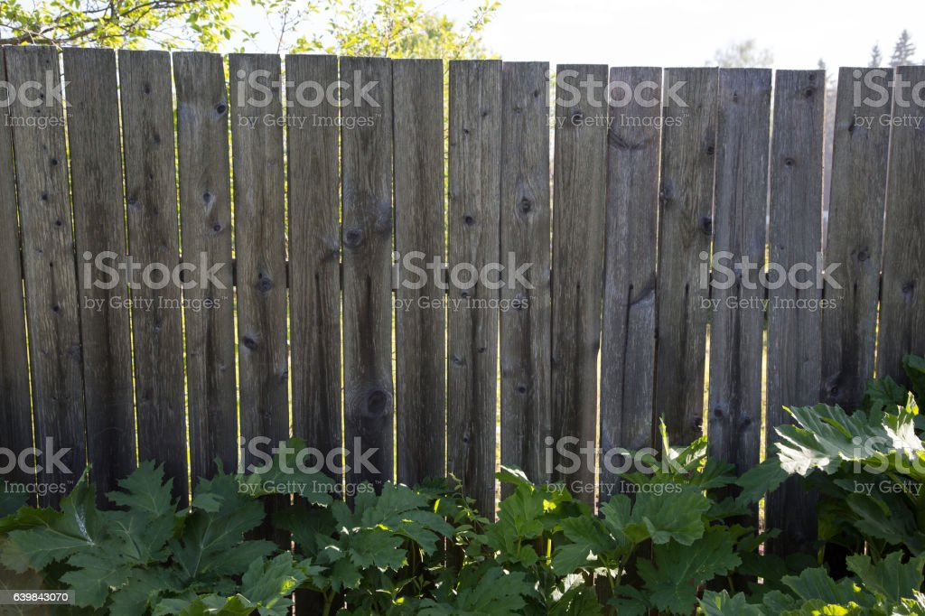 old wooden fence summer day stock photo