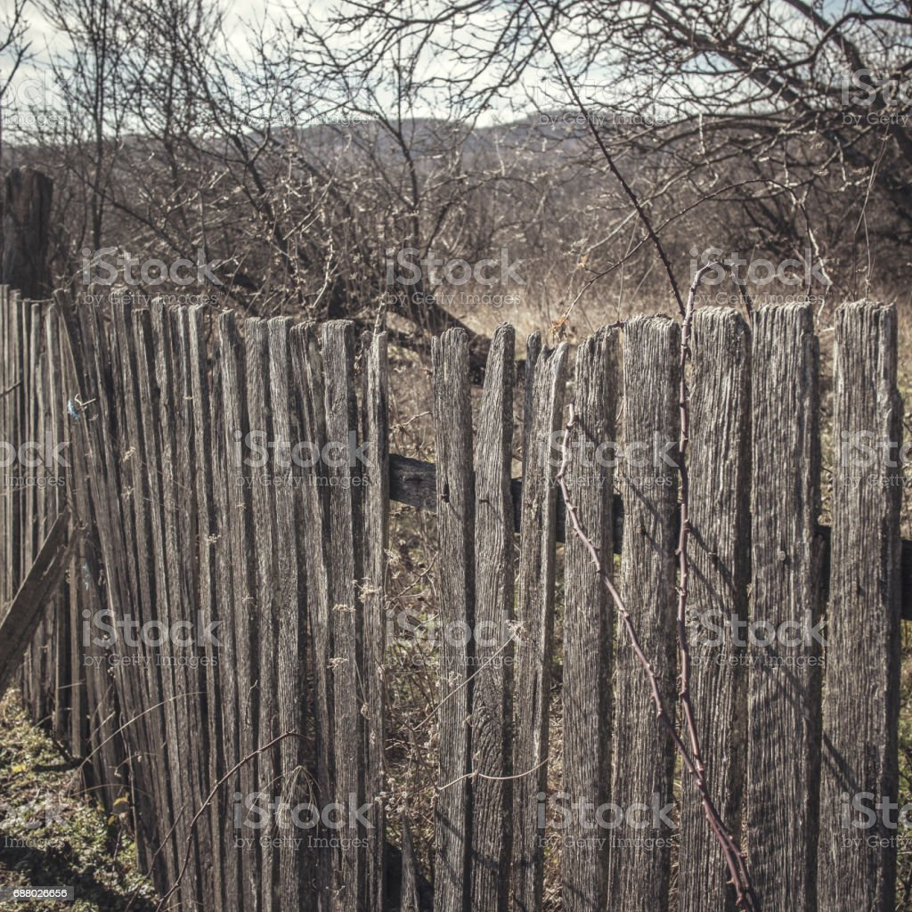 old wooden fence with rusty nails stock photo