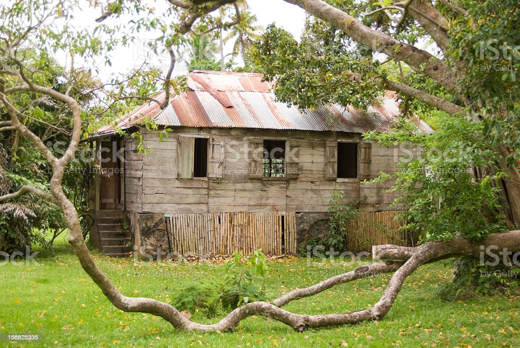 old wooden house on plantation stock photo
