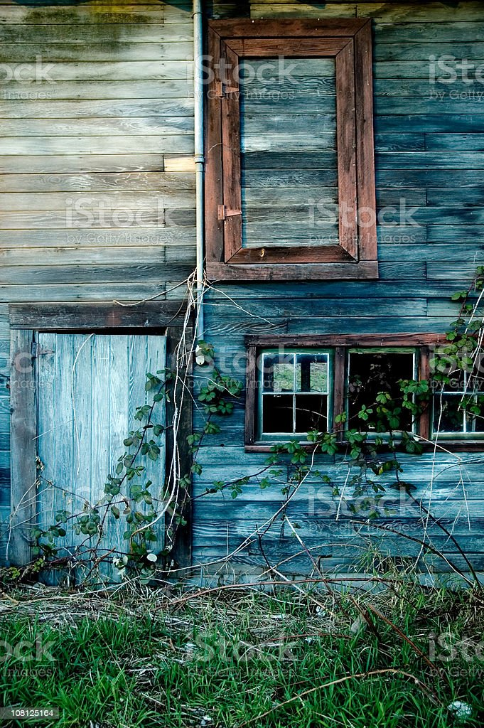 Old Wooden House with Weeds and Vines royalty-free stock photo