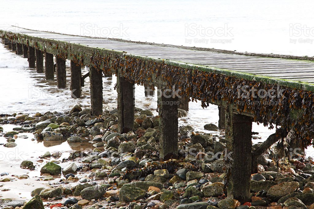 old wooden jetty going into the Irish Sea stock photo