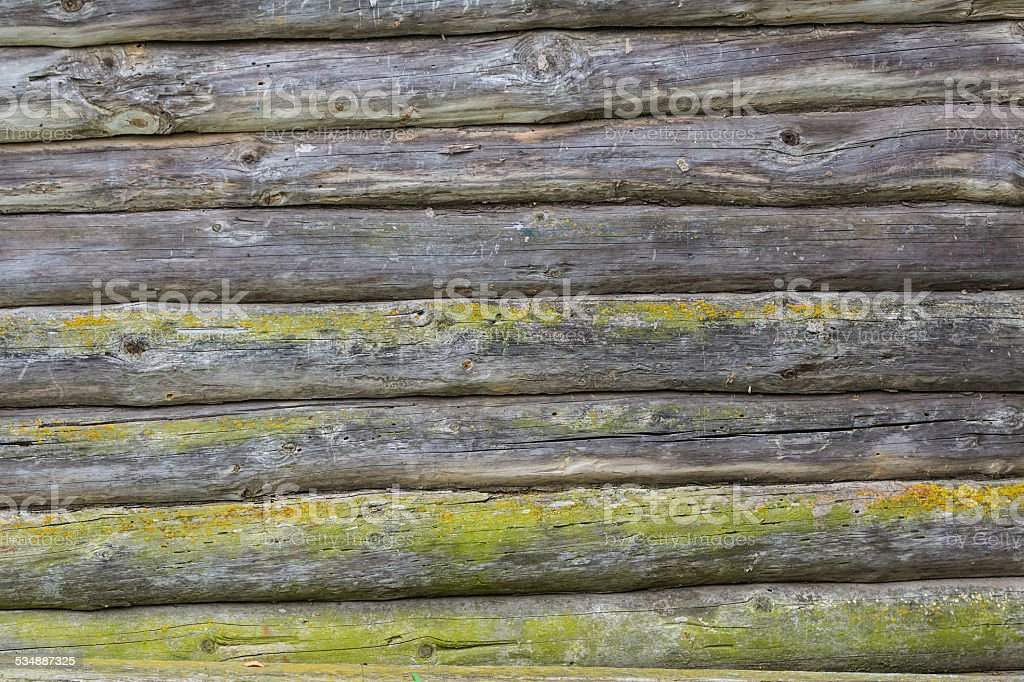 Old wooden logs wall covered with green moss stock photo
