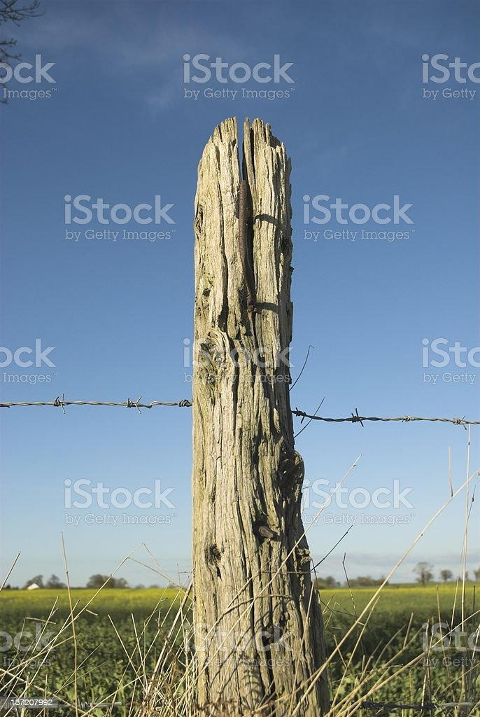 Old Wooden Post royalty-free stock photo