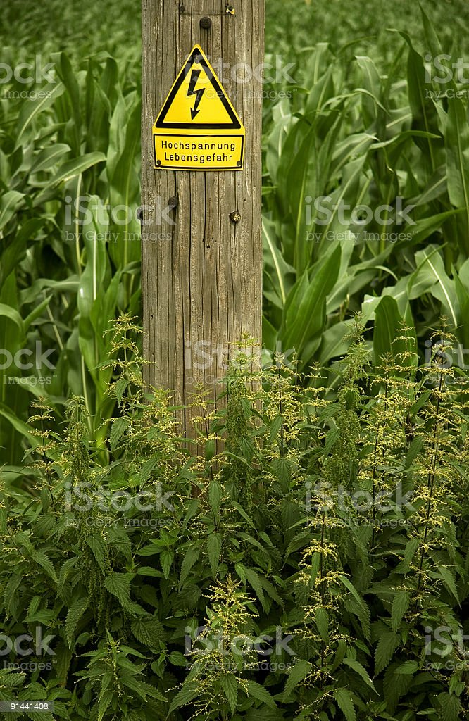 Old wooden power pole with warning danger in greenfield royalty-free stock photo