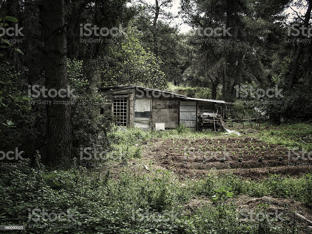 Old wooden shed royalty-free stock photo