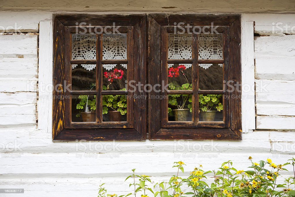 Old wooden window with curtain and flowers royalty-free stock photo