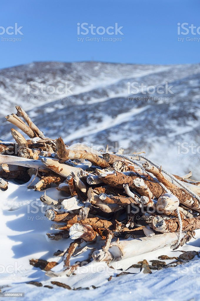 Old woodpile royalty-free stock photo