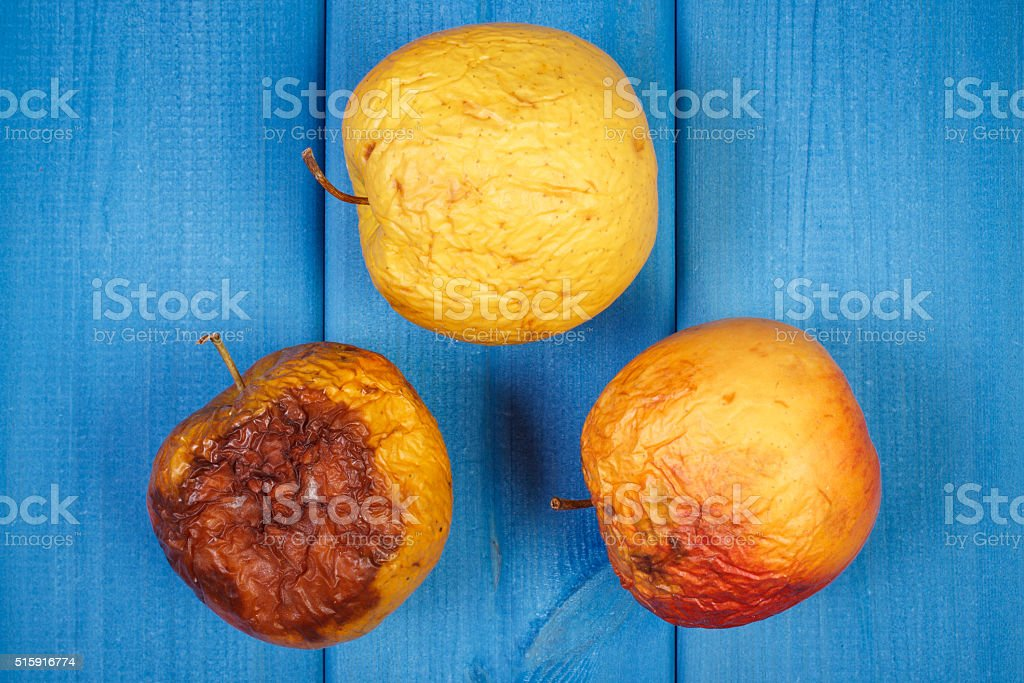 Old wrinkled apples with mold on blue boards stock photo