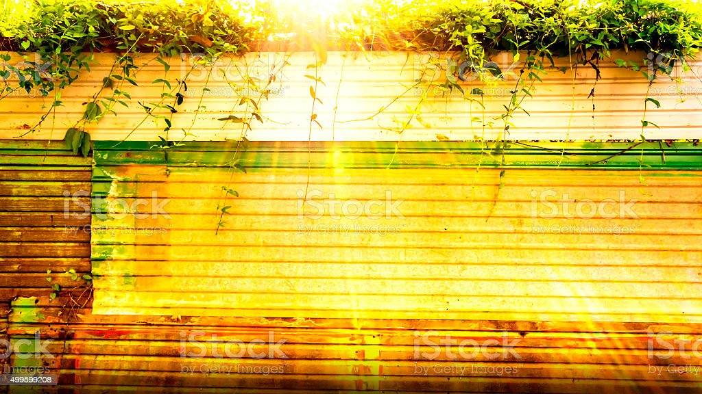 old zinc walls in the garden royalty-free stock photo