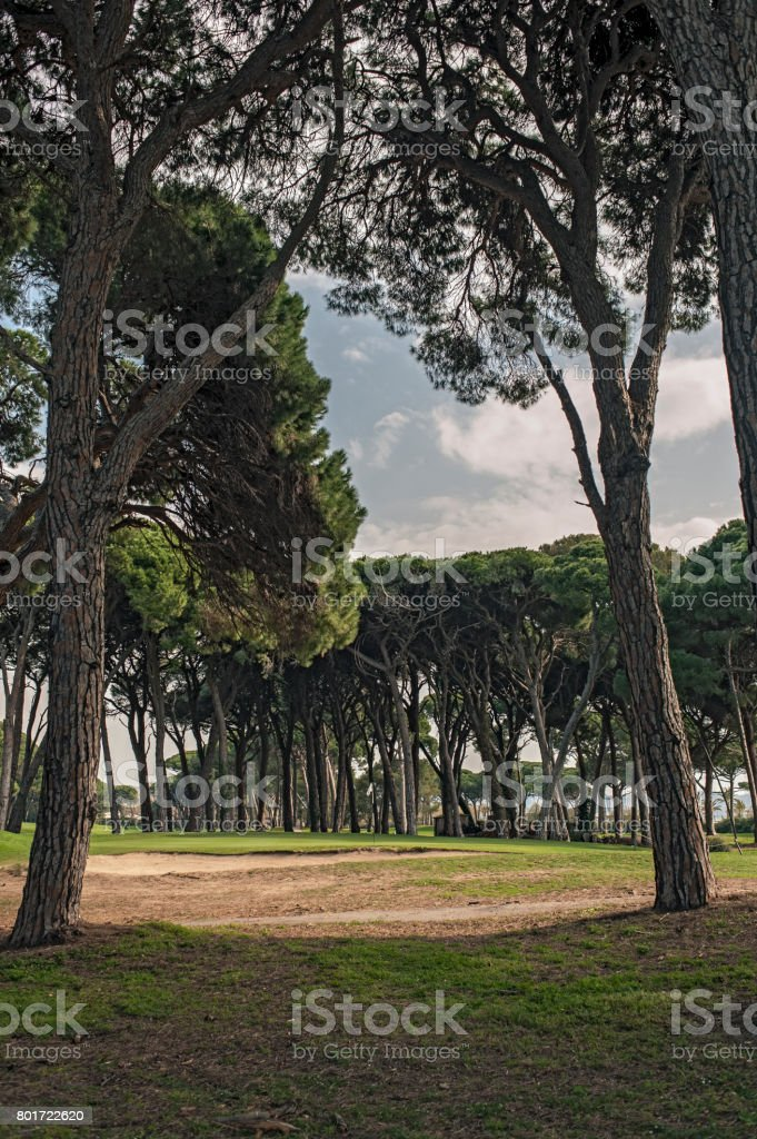 Oldcourse Green in Cannes stock photo
