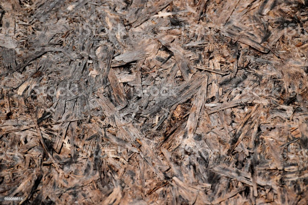 Olded wood texture stock photo