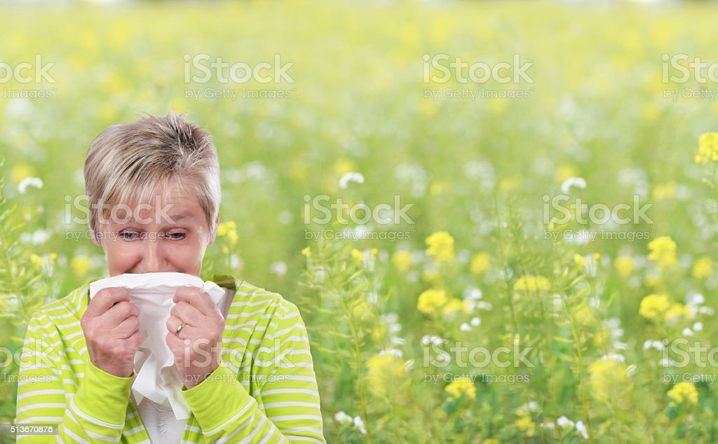 Older woman with handkerchief in front of a flower field stock photo