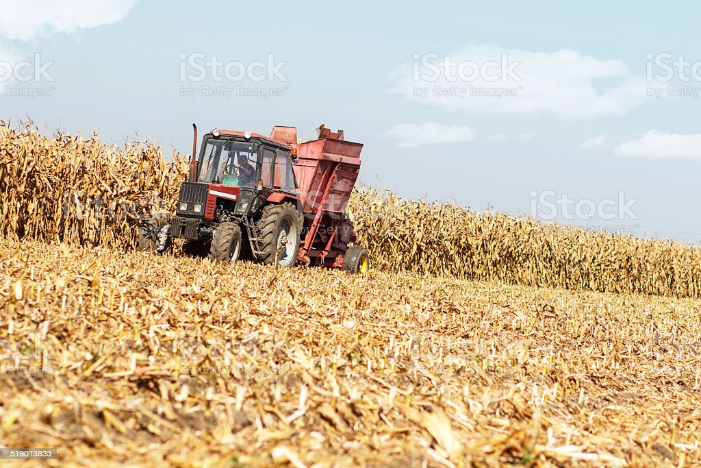 Old-Fashioned tractor harvesting stock photo