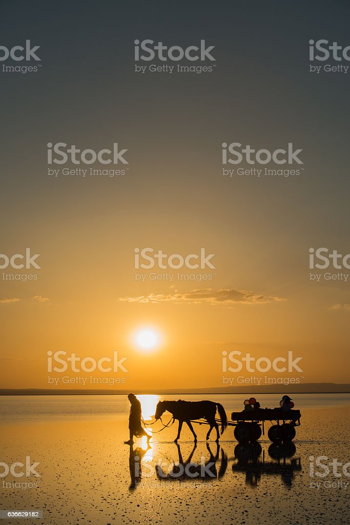 Oldman carrying his family with horse cart on the lake stock photo