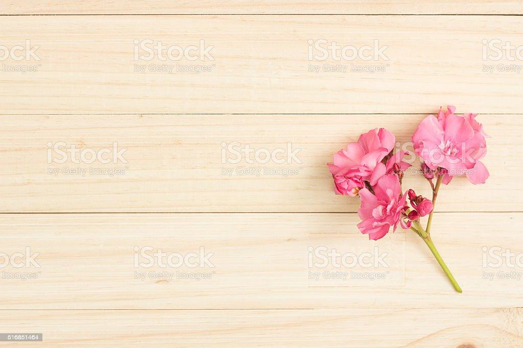 Oleander on wood stock photo