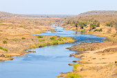 Olifants River panorama from Satara camp viewpoint, Kruger Natio