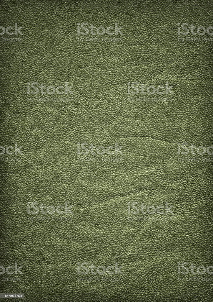 Olive Green Pig Leather Vignette Grunge Texture royalty-free stock photo