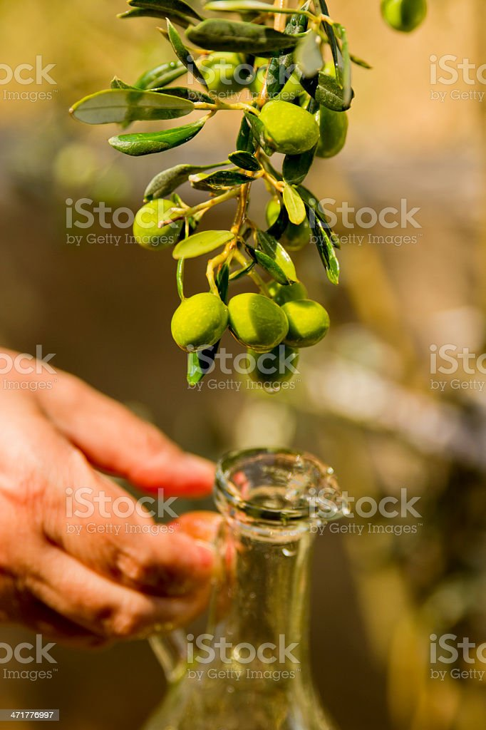 Olive Oil Leaked Into The Bottle royalty-free stock photo
