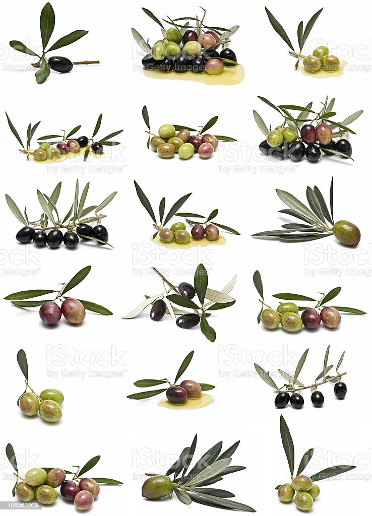 Olives collection. stock photo