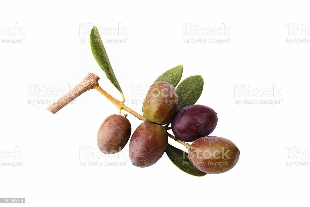Olives on white stock photo
