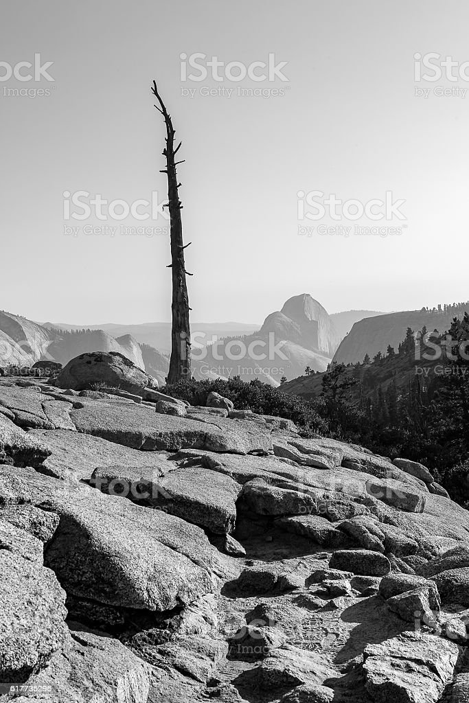Olmsted Point Yosemite stock photo