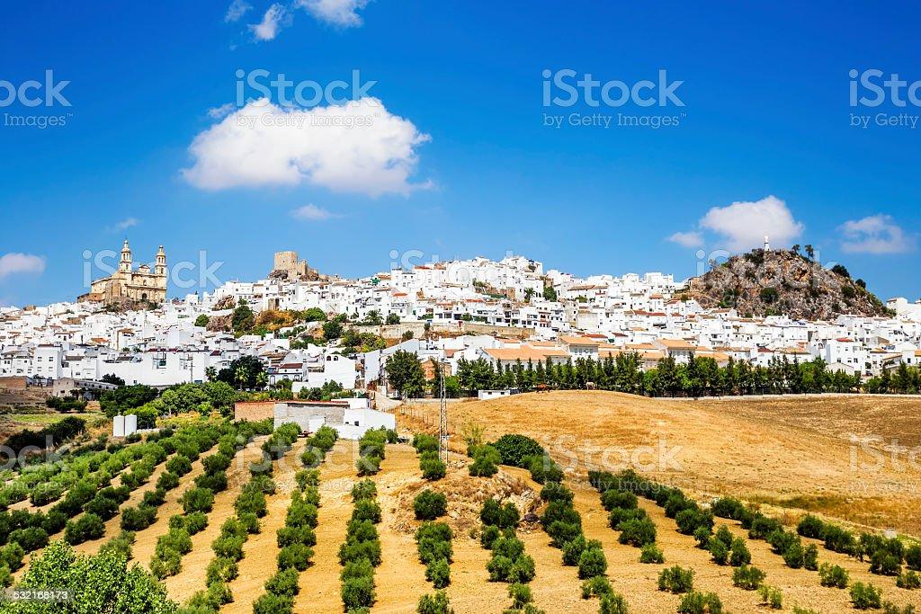 Olvera, Cadiz province, Andalusia, Spain. stock photo