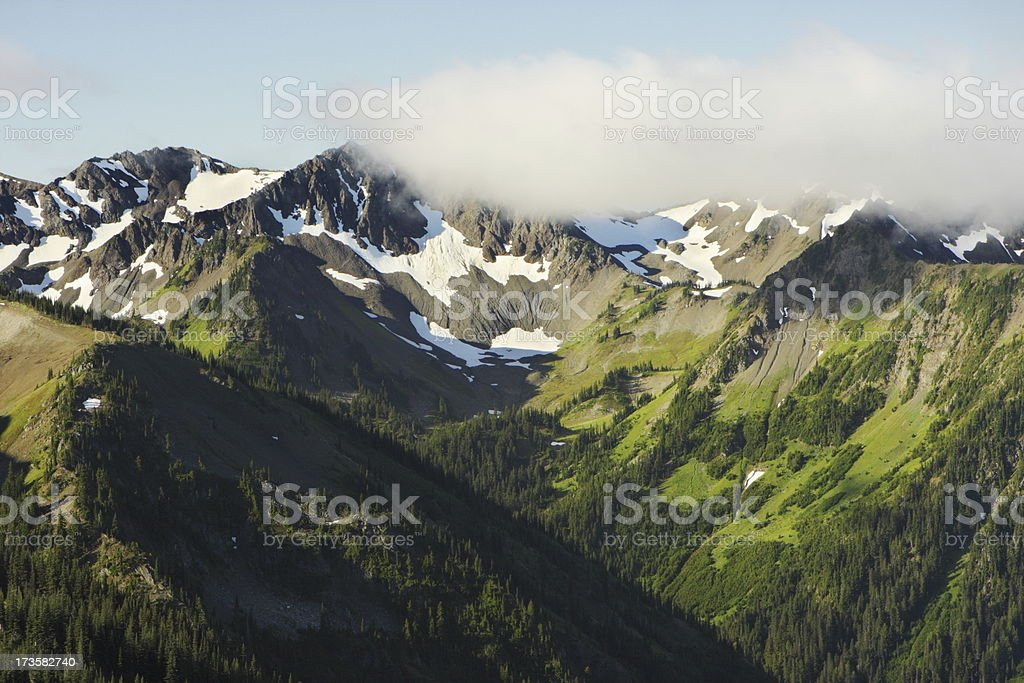 Olympic Mountain Hurricane Ridge Wilderness Mist stock photo
