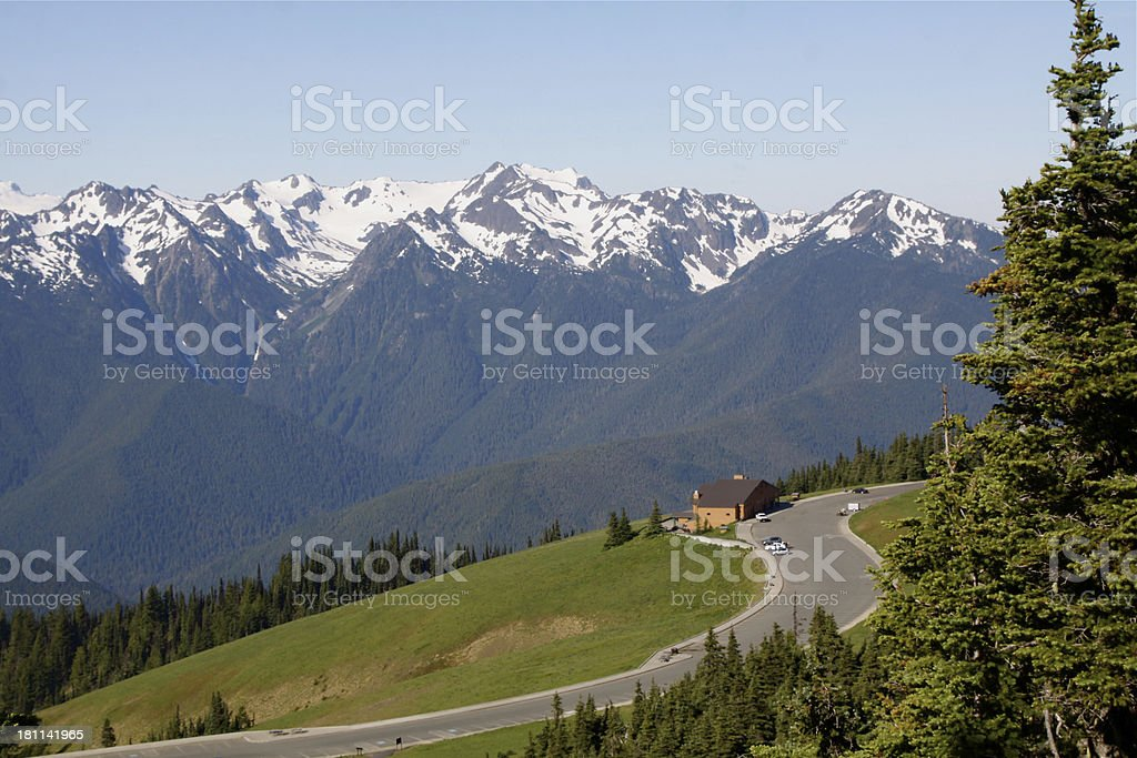 Olympic Mountains From Hurricane Ridge stock photo