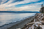 Olympic Mountains Landscape