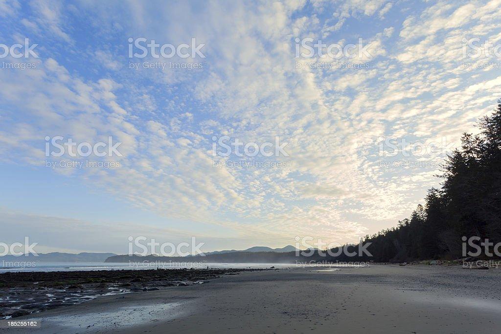 Olympic National Park Beach stock photo
