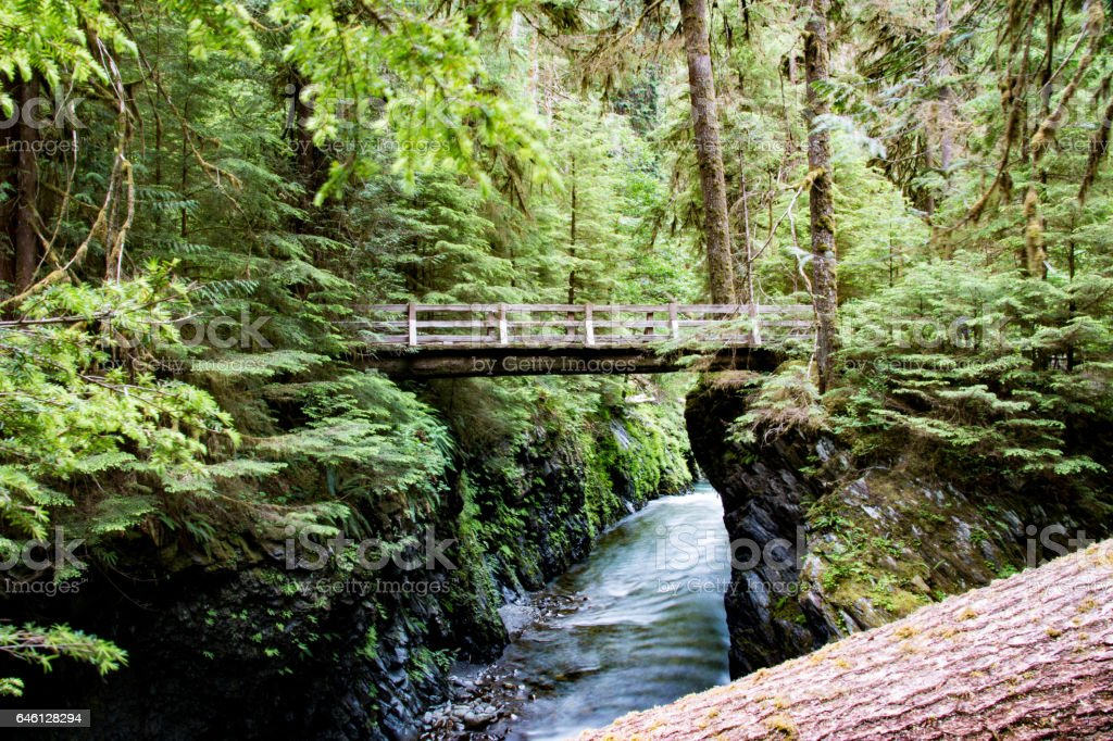 Olympic National Park, United States stock photo