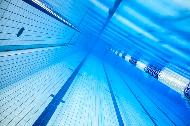 olympic swimming pool stock photo