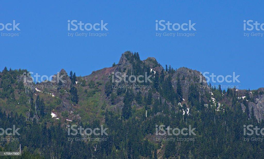 Olympic's Lightning Peak stock photo