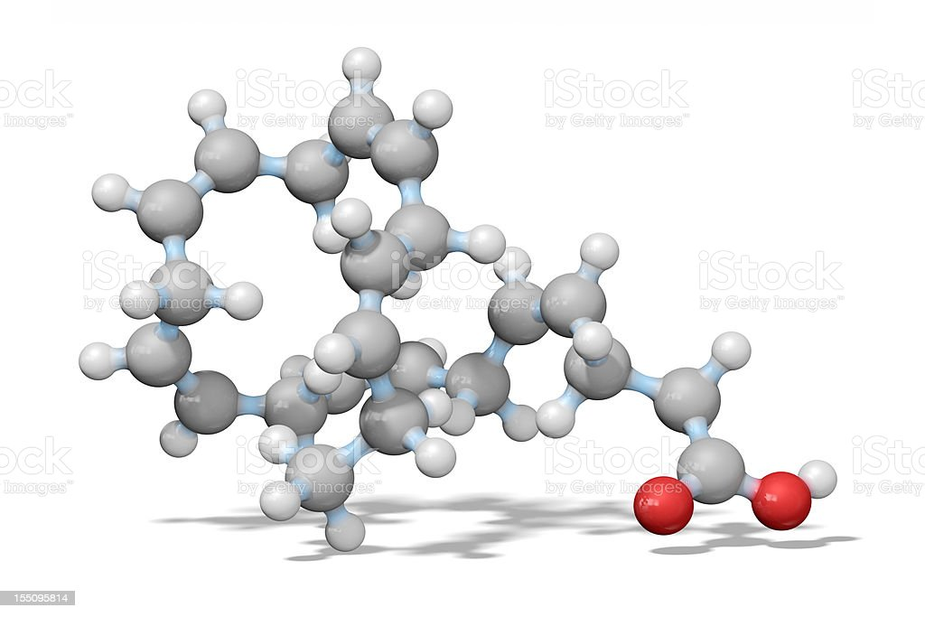 Omega-3 Essential Fatty Acid Model royalty-free stock photo