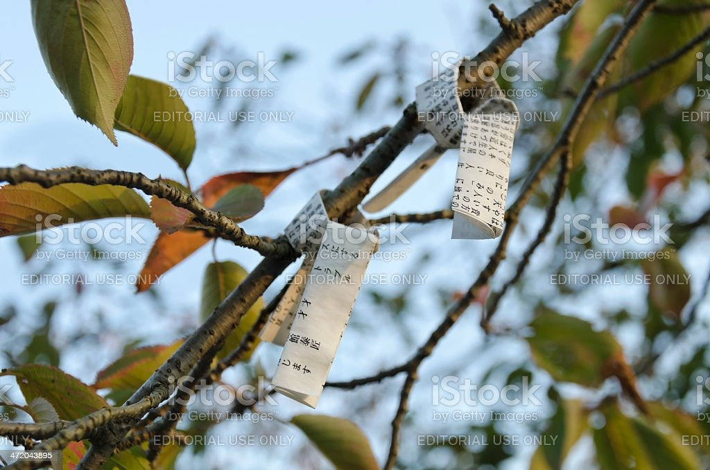 Omikuji fortune papers royalty-free stock photo