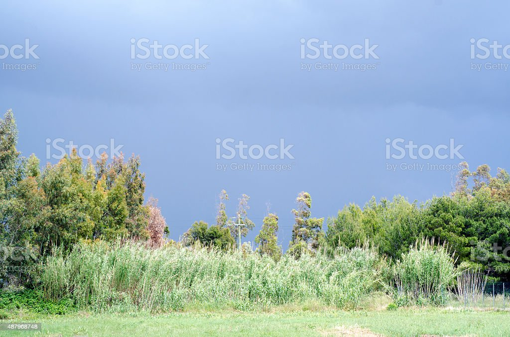 Ominous dark clouds of storm and vivid green earth in the bottom for...