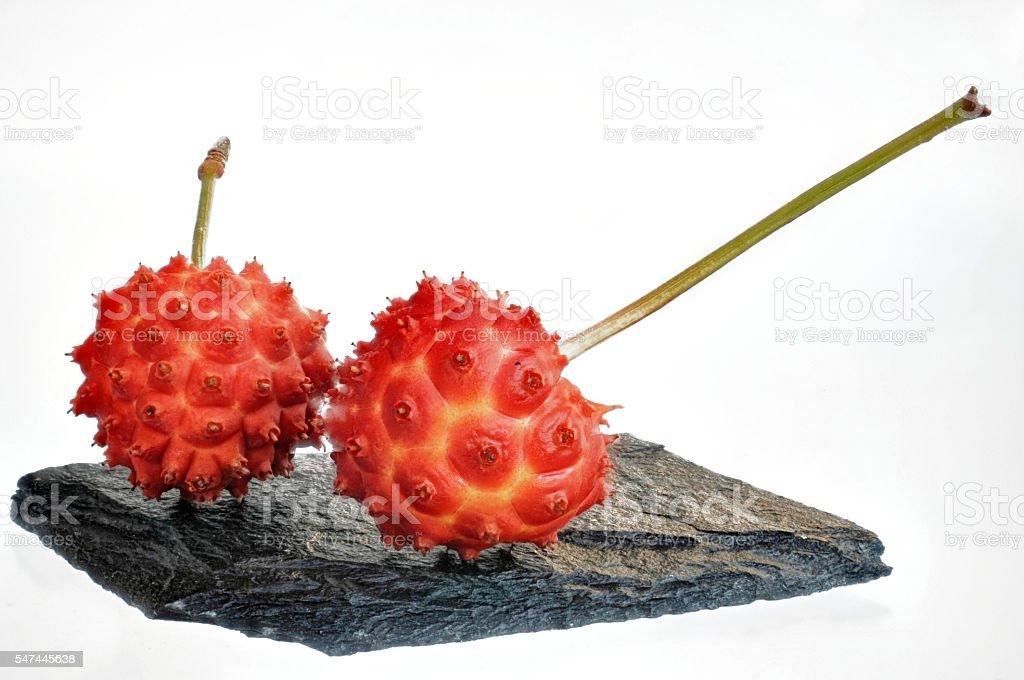 on a black stone slab fresh red strawberry tree fruits stock photo