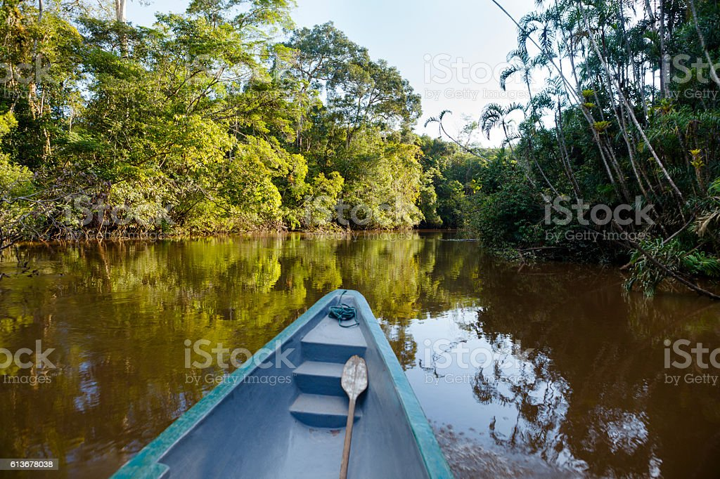 On a boat in the amazonian jungle. stock photo