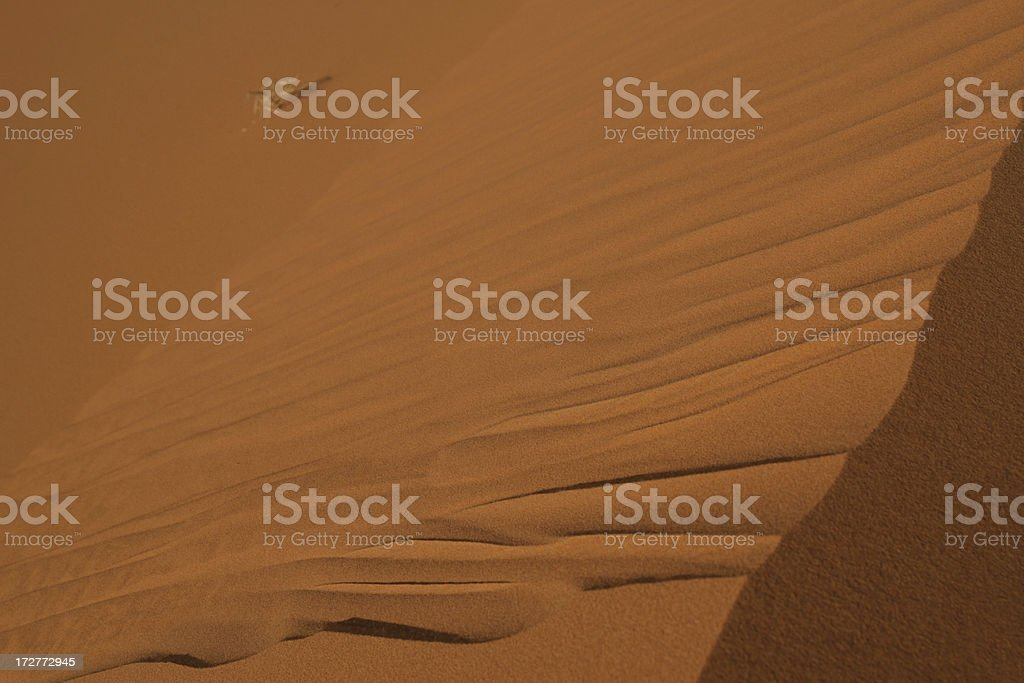 On a dune. stock photo
