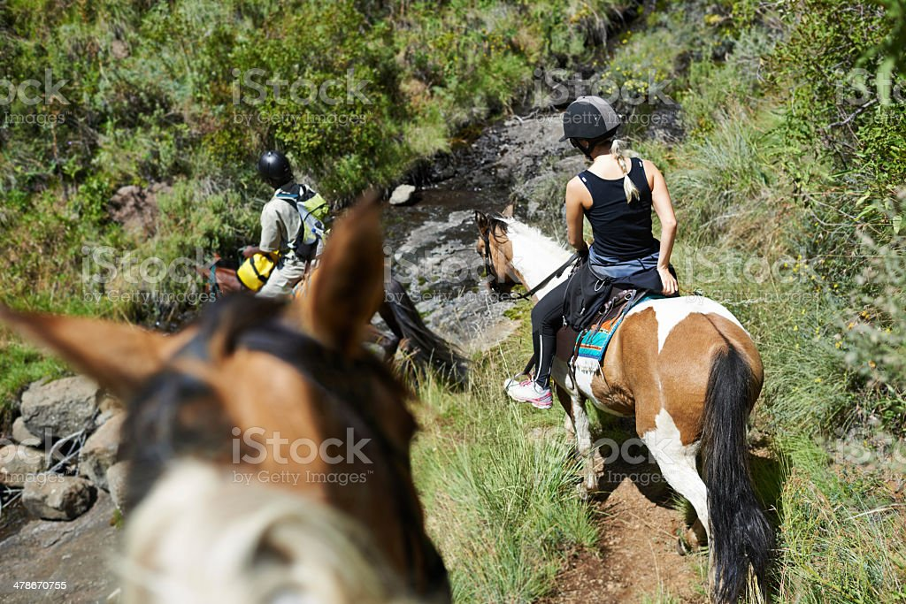 On a guided horseback tour stock photo