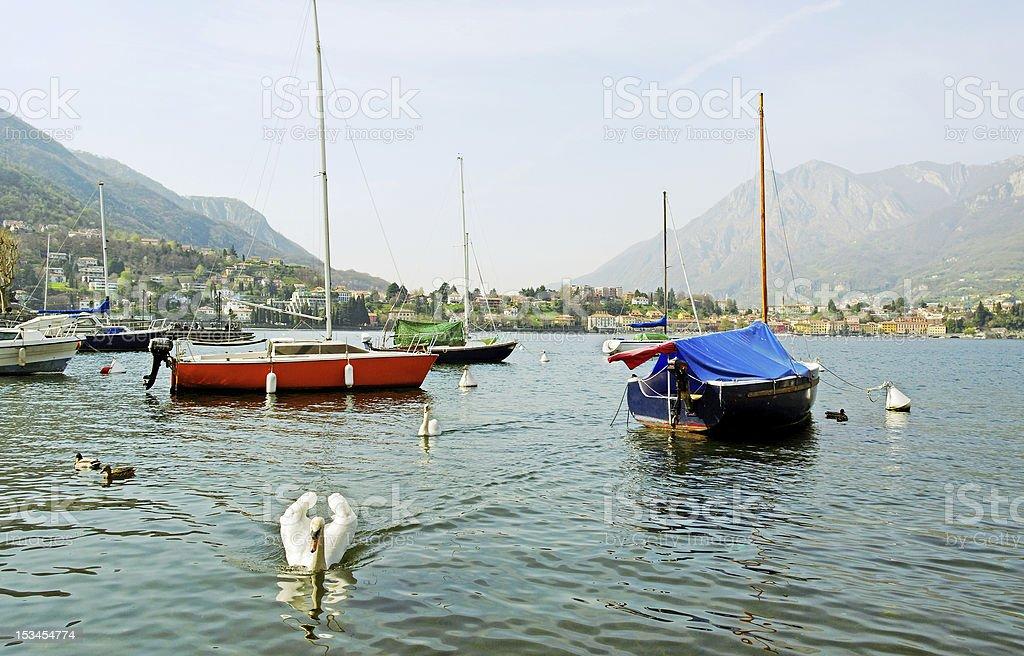 On a lake. royalty-free stock photo