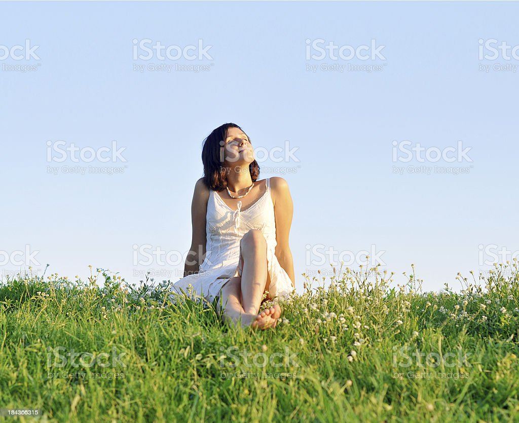 On a meadow royalty-free stock photo