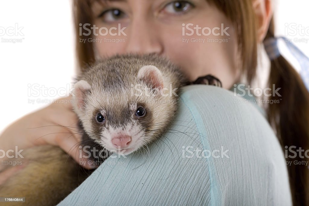 on a shoulder of the mistress stock photo